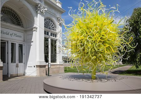 BRONX, NY, USA - JUNE 9, 2017: NY BOTANICAL GARDEN.  Dale Chihuly's art exhibition displayed at NYBG.  Shown here is Sol del Citron, one of the highlights of the exhibit at the entrance of the Haupt Conservatory.