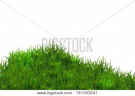 Green grass isolated on blue sky background. .