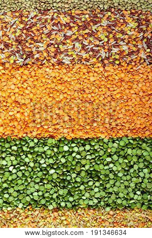Dried Legumes Layers