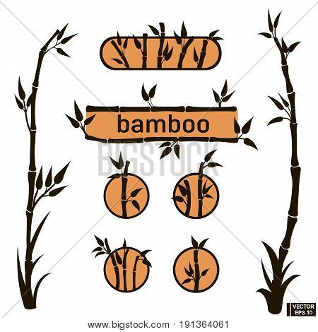 Bamboo Icons And Frames Set