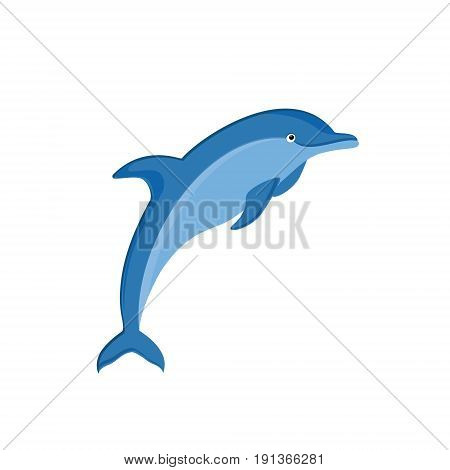 Dolphin Vector Icon