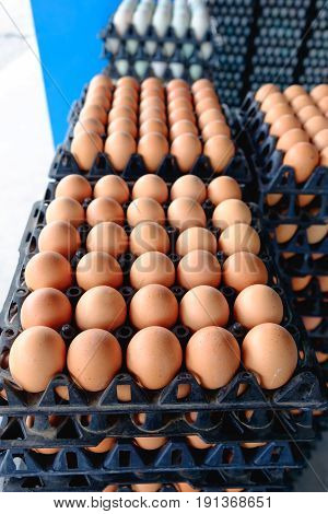 Eggs From Hen Farm In The Package That Preserved For Sale.