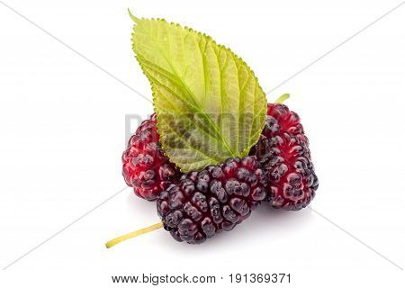 Fresh mulberry with leave isolated on white background.