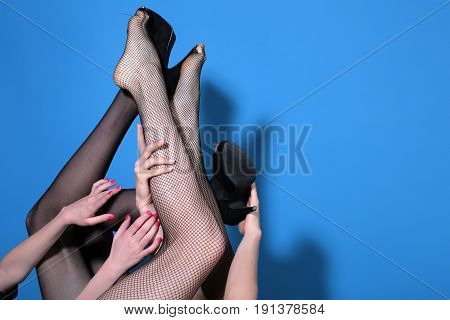 Female Legs Of Sexy Beautiful Girls Wearing Tights