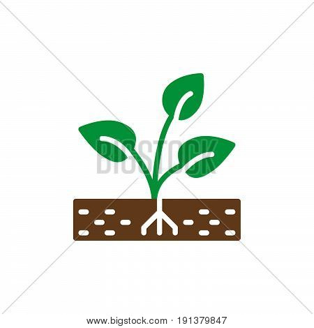 Plant sprout icon vector filled flat sign solid colorful pictogram. Symbol logo illustration
