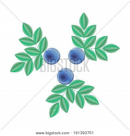vector illustration, imitation of embroidery. blue forest summer berry with green leaves. Bilberries.