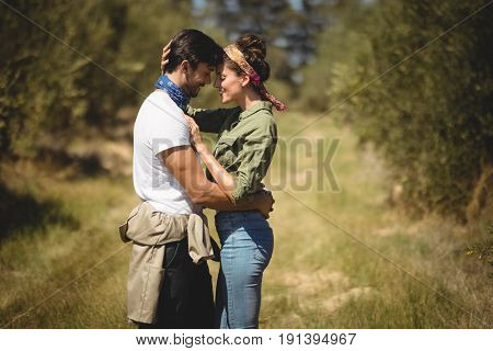Side view of young couple embracing at olive farm on sunny day