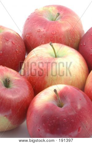 mcintosh apples on a white background vertical poster