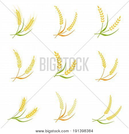 Ear spike logo badge icon wheat isolated vector. Concept for organic products label, harvest and farming, grain, bakery, healthy food.