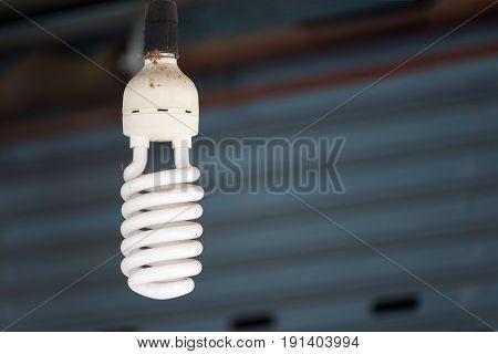 Energy Saving Fluorescent Light Bulb For Home Decoration.