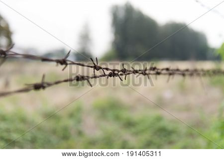 Close up of barbed wire with vintage look