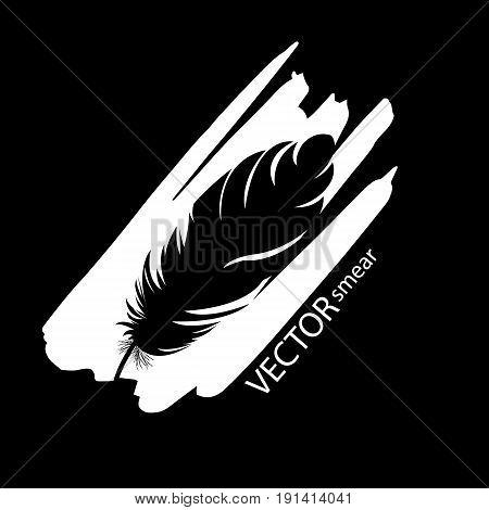 feather vector pen illustration art bird icon quill symbol