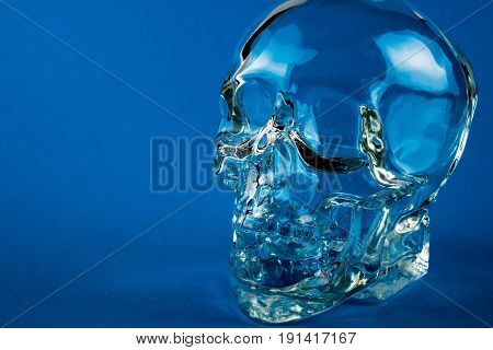 Crystal skull glass brain pan with blue background detail