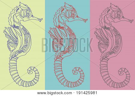 sea horses on colored backgrounds, picture on a wall