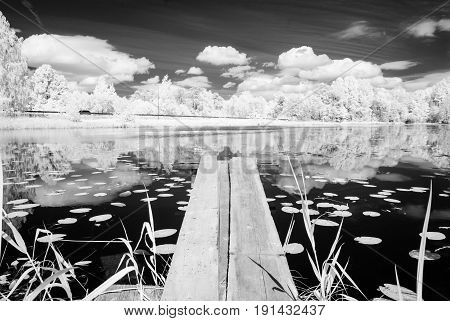 Forest Lake In Hot Summer Day. Infrared Image