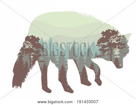 Vector illustration of a howling wolf, engraving.