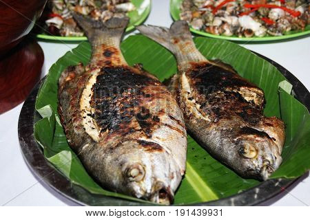 Two grilled bangus or milkfish in banana leaf Two big fat bangus or milkfish grilled over live coals and served in a banana leaf is a favorite recipe in the Philippines.