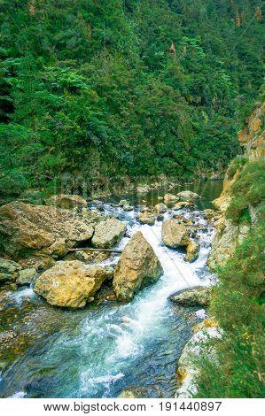 Calm river runs through the forest at Dickey Flat Campsite Karangahake, New Zealand.