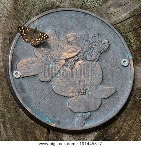 Speckled Wood Butterfly on metal flower plaque