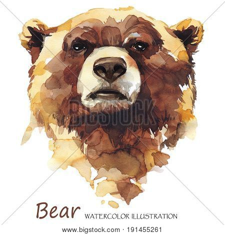 Watercolor bear on the white background. Forest animal. Wildlife art illustration. Can be printed on T-shirts, bags, posters, invitations, cards, phone cases, pillows. Place for your text.