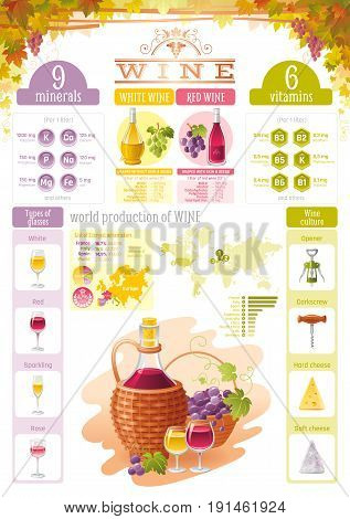 Wine infographics icons. Vector alcohol drink icon set, vineyard, grapes, cheese food, vintage bottle illustration isolated background. Diagram poster design. Vitamin table, red, rose, sparkling glass