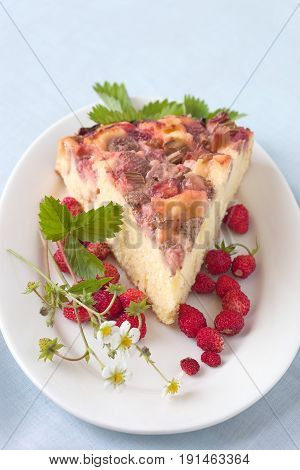 Freshly baked fruit cake with strawberry and rhubarb.