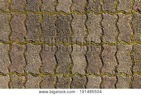 Some zig zag shaped paving blocks with moss growing in between them