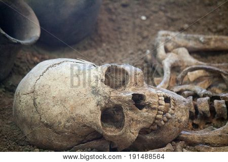 Archaeological Excavations Of An Ancient Human Skeleton And Human Skull