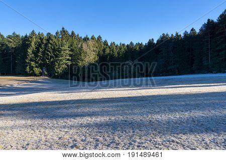Wintertime in the Black Forest. A high standing in the forest at the edge of a clearing.