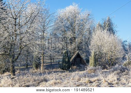 Wintertime in the Black Forest. A cold winter day in the Black Forest. Hut and field covered by frost.