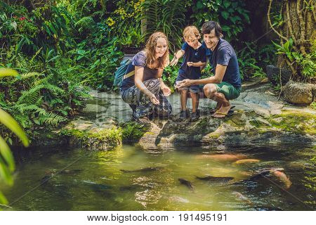 happy family feeding colorful Catfish in tropical pond.
