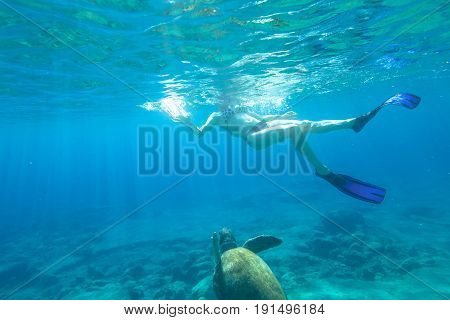 Bikini woman swims with sea turtle Caretta in crystal waters of Foneas Beach, Kardamili, Mani peninsula, Greece. Watersport activity in summer vacations. Snorkeler female with mask and fins swimming.