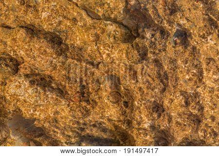Close up photo of limestone texture rocky coastline