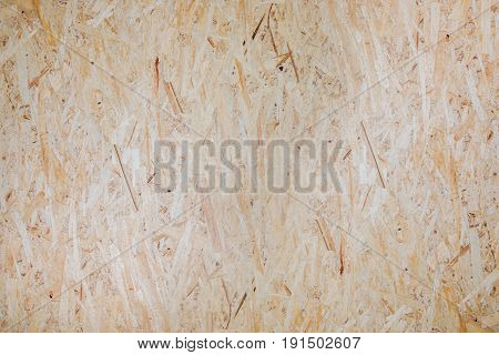 Plywood Photo Background. Construction Wooden Panel Backdrop.