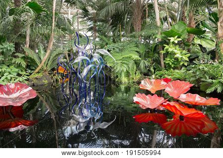 BRONX, NY, USA - JUNE 9, 2017: NY BOTANICAL GARDEN.  Dale Chihuly's art exhibition displayed at NYBG.  Shown here is Persian Pond and Fiori displayed inside the entrance of the Haupt Conservatory.