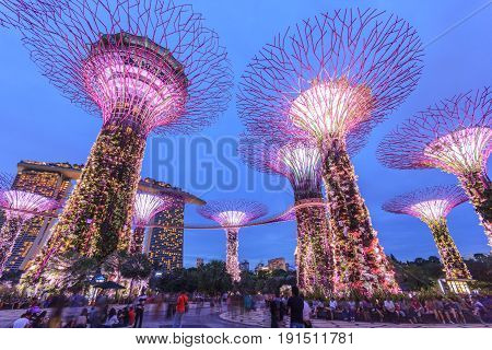 SINGAPORE - MAY 14: Night view of Supertree Grove at Gardens by the Bay on May 14, 2016 in Singapore. Spanning 101 hectares of reclaimed land in central Singapore adjacent to the Marina Reservoir