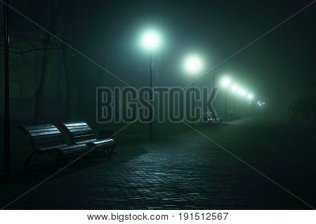 An Empty Benchs In City Boulevard, Avenue. Alley At The Foggy Street At Night