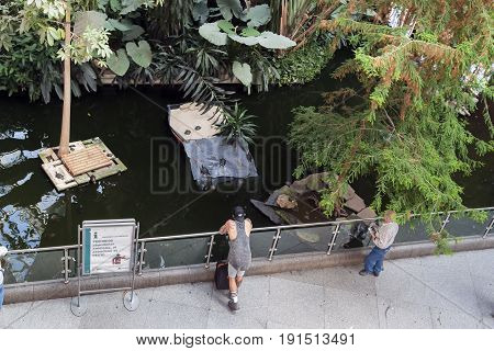 MADRID, SPAIN - MAY 24, 2017: It is a pool with exotic fish and turtles in the winter garden of the Atocha railway station.