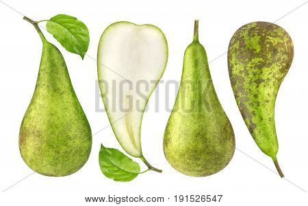 Pear isolated. Green conference pears isolated on white background.