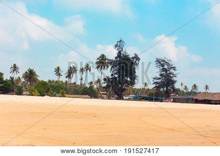 Tropical Sandy Beach Of Arambola, Goa, India.