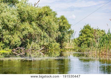 Landscape photo of Danube Delta in Romania