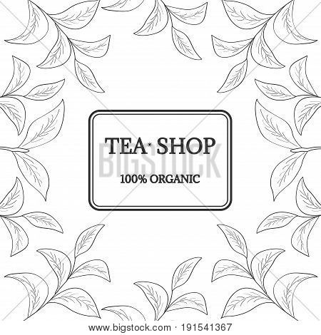 Green tea  shop leaf illustration, branch organic hand drawing sketch, square banner template for packing cosmetics, packaging, branding, etc