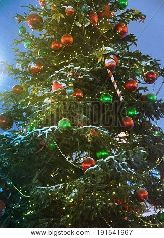 lighting christmas tree in city street