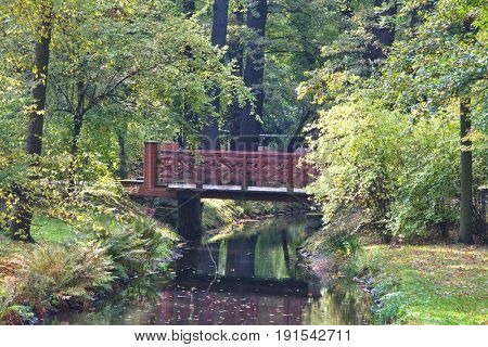 Bridge in Japanese garden in fall time