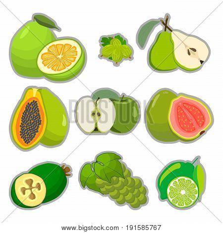 Abstract vector illustration logo for whole ripe fruit pomelo lime pear green stem cut sliced.