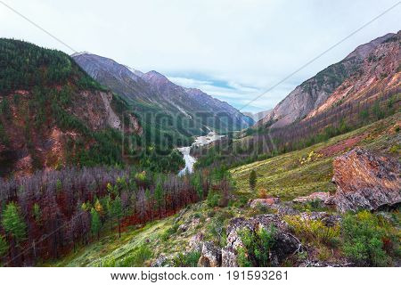 High mountains with rare green trees on slopes. At the bottom the blue river in the horizon flows.Russia Mountain Altai