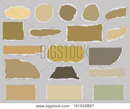 Multiform Pieces of torn blank paper with shadow and vintage colors. Template for scrapbooking or greeting card. Vector illustration