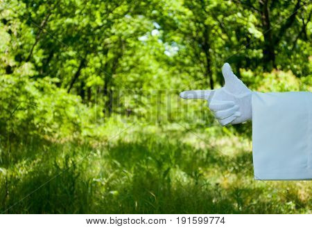 The waiter's hand in a white glove and with a white napkin shows with the fingers a sign of direction to the left on a green background of trees and bushes on a blurred background