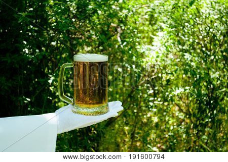The waiter's hand in a white glove and with a white napkin holds a beer glass filled with beer and foam on a blurred background of the nature of trees and bushes
