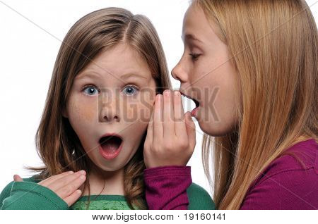 Two girls telling a secret and expressing surprise isolated on white